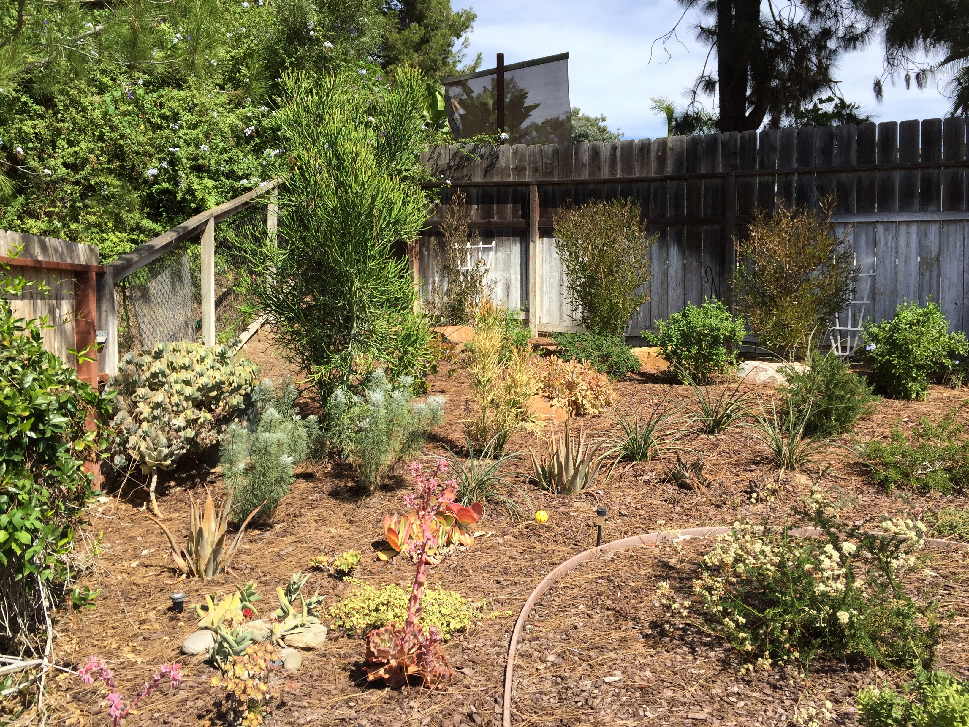 Beautifully Landscaped Encinitas home in North County San Diego ...