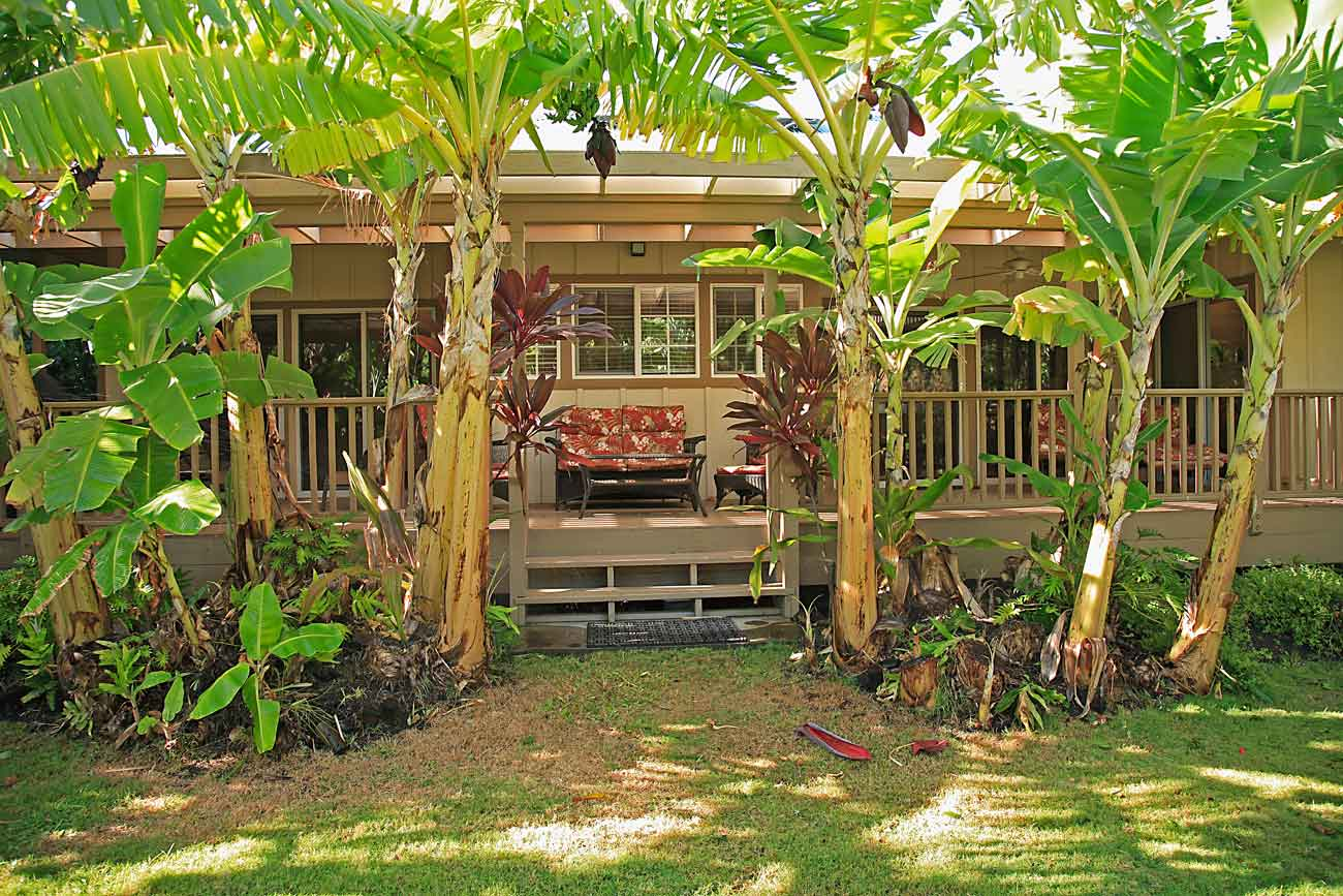 Beach House on Big Island of Hawaii - Home Exchange