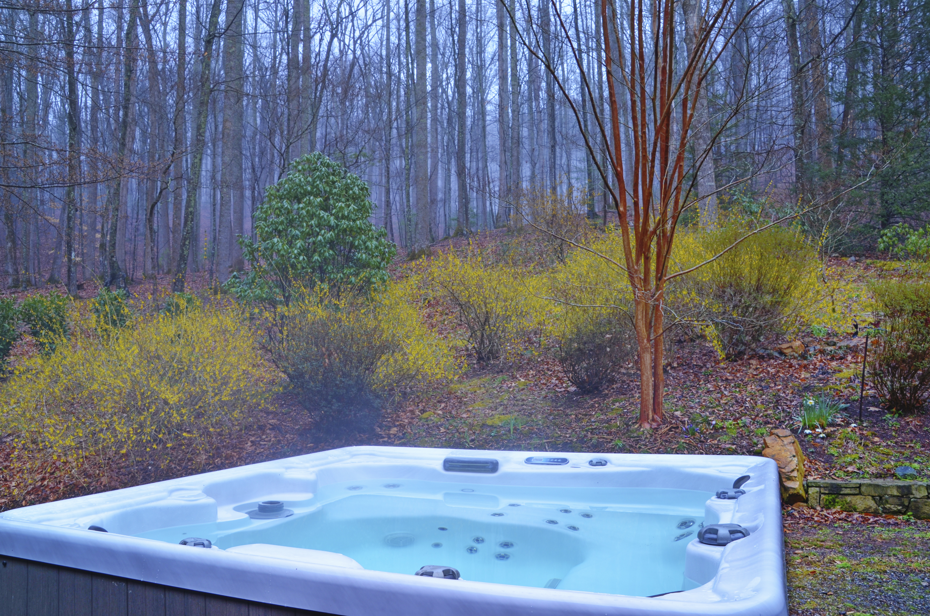 wooded retreat with a hot tub and lots of privacy near asheville