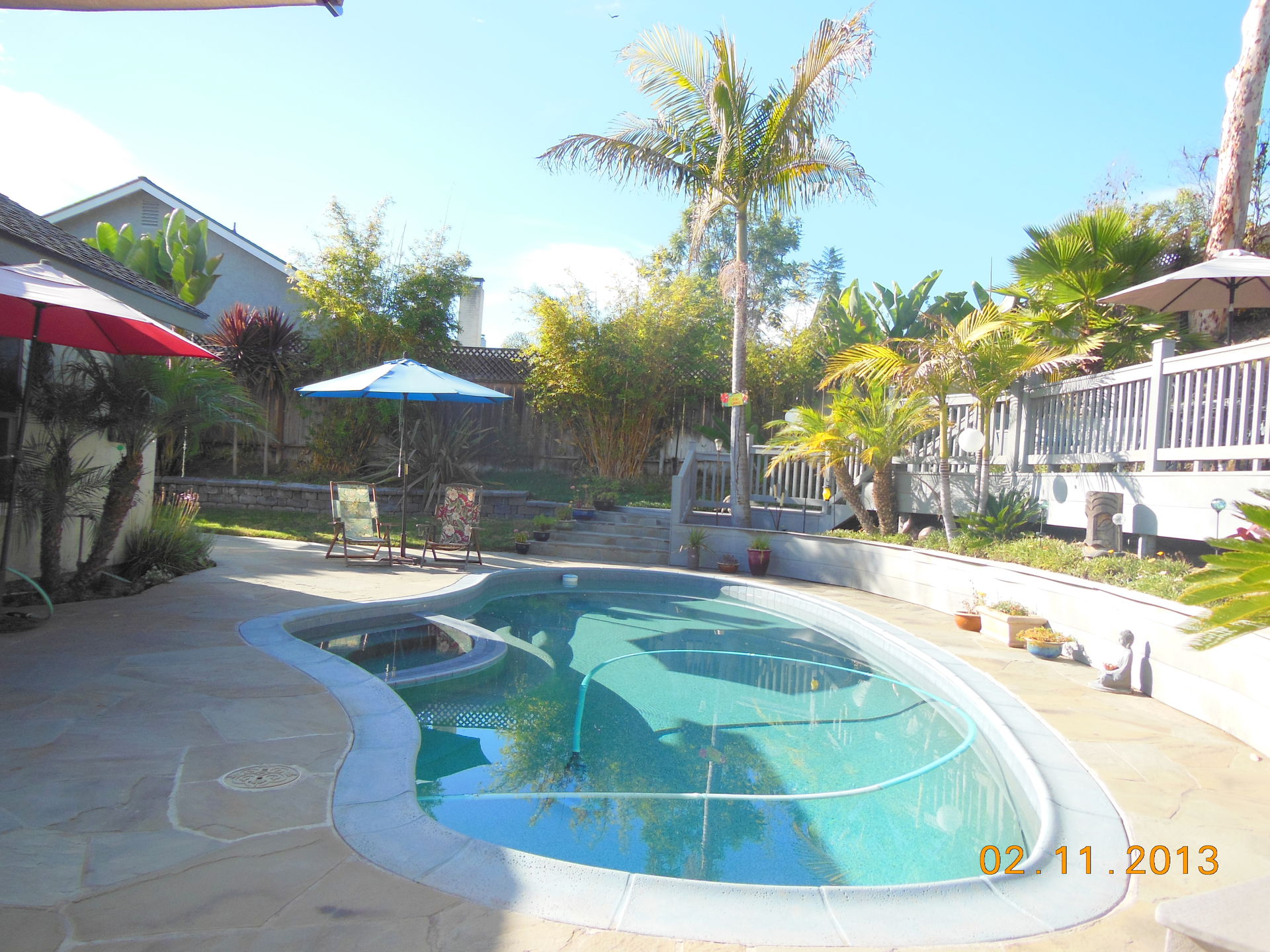 Tropical Backyard Paradise! Bring the pets. Pool, deck, spa, garden ...