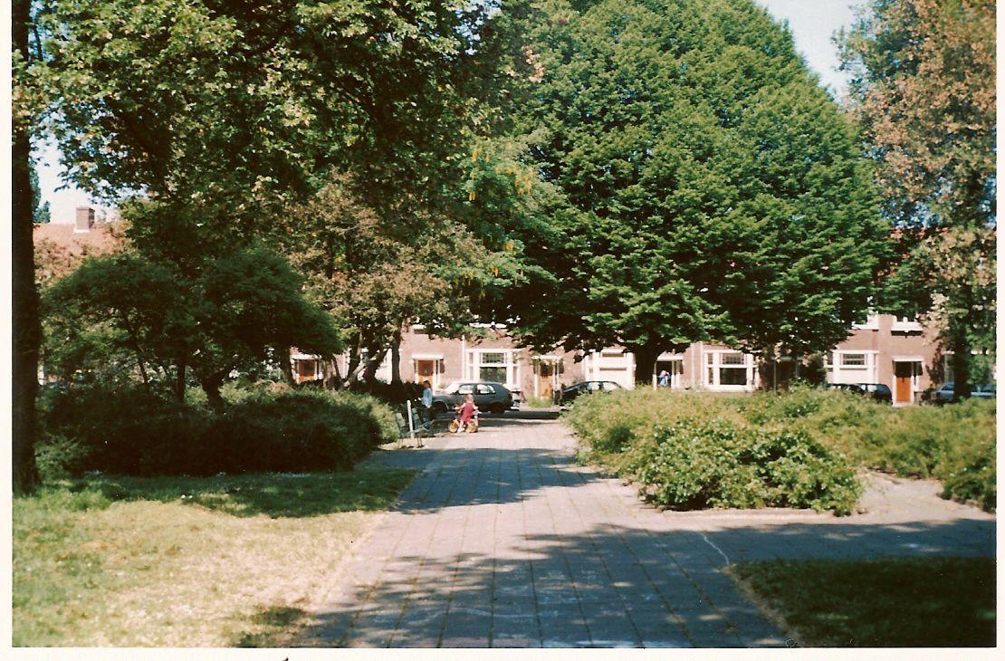 our house - Amsterdam Garden