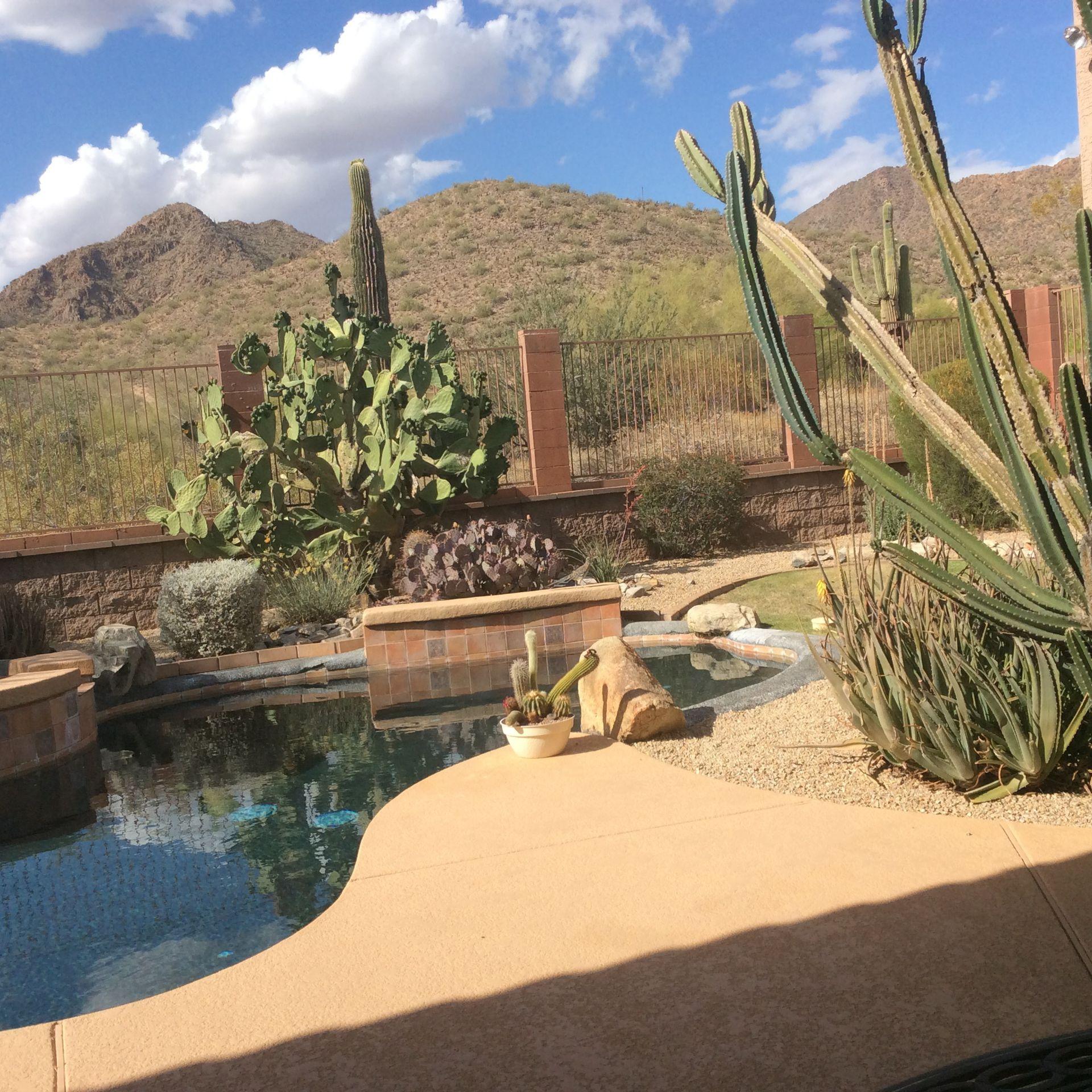 Beautiful desert views from 3 bdrm home in Scottsdale, Arizona ...