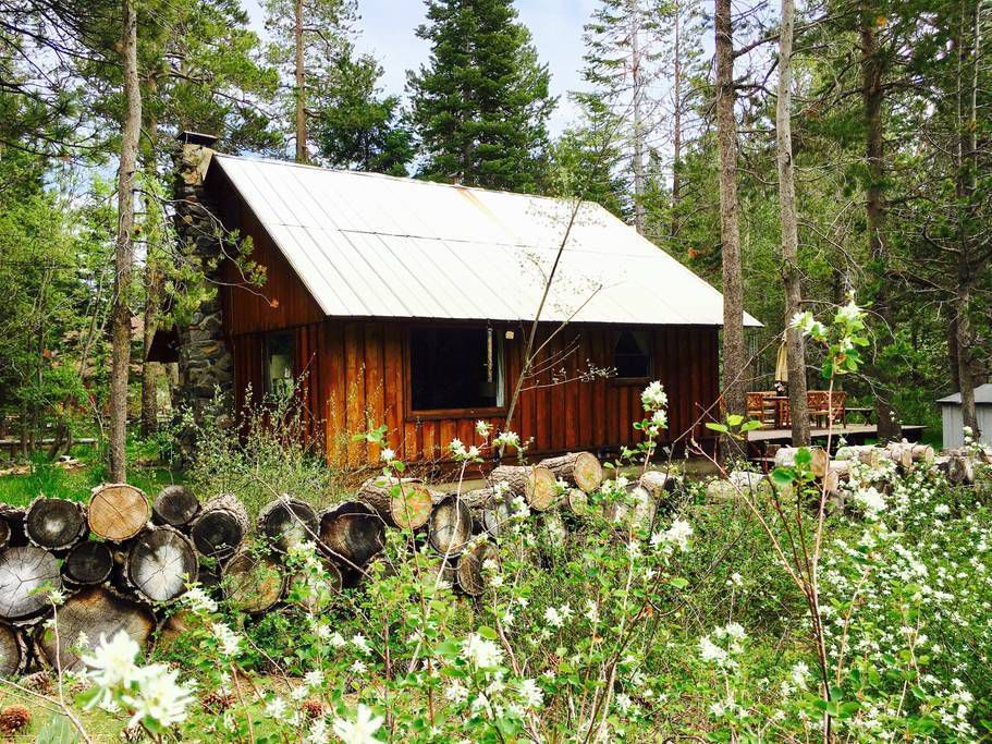 sweet nevada cove cabin family and dreams in mink lake bay tahoe cabins house crystal retreat