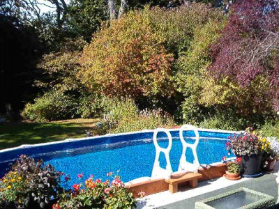 Victoria, pool; want pool or waterfrt, sim. or our summer/your winter
