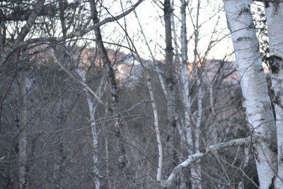 Condo Close to Skiing, Hiking, Golf, Shopping in White Mountains of NH